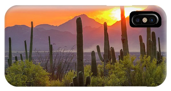 Usa, Arizona, Saguaro National Park IPhone Case