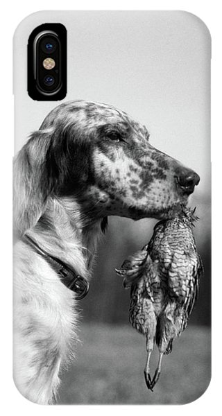 Upland iPhone Case - 1920s English Setter Holding Retrieved by Vintage Images