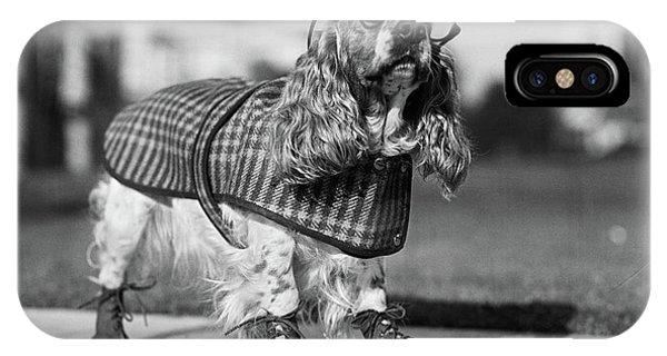 1930s Cocker Spaniel Wearing Glasses IPhone Case