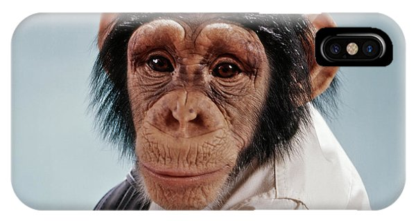 1970s Close-up Face Chimpanzee Looking IPhone Case