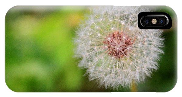 A Dandy Dandelion IPhone Case