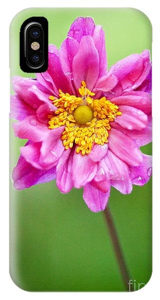 Anemone Flower Phone Case by Natalie Kinnear