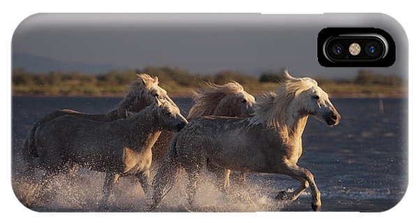 French iPhone X Case - Angels Of Camargue by Rostovskiy Anton