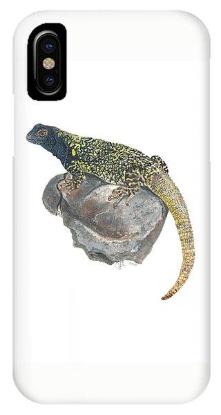 Argentine Lizard IPhone Case