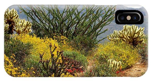 Arizona Springtime IPhone Case