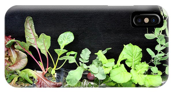 Developed iPhone Case - Astronaut Vegetable Production System by Nasa