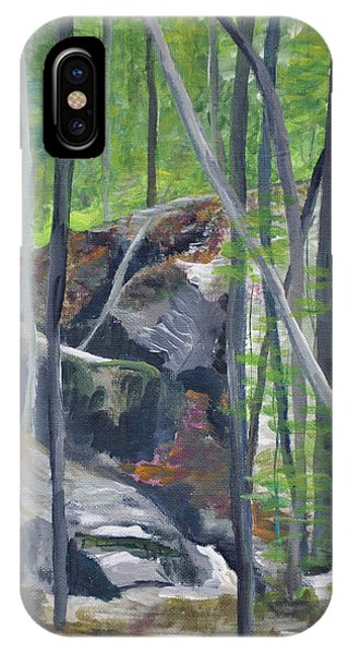 Backyard At Sussex 2 IPhone Case