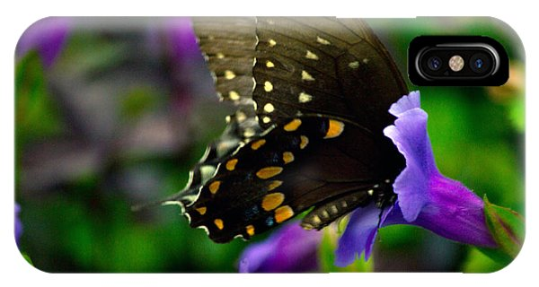 Black Swallowtail IPhone Case