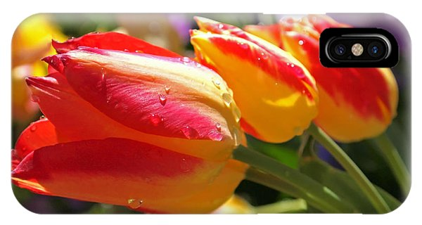 Bowing Tulips IPhone Case