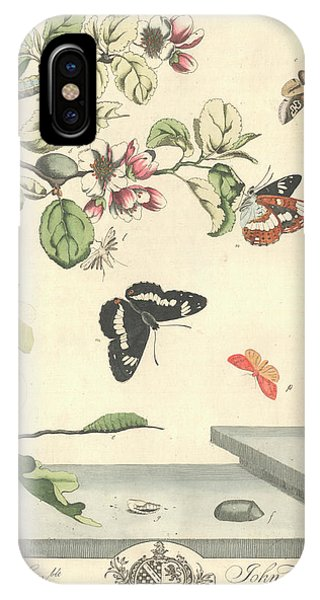 Chrysalis iPhone Case - Butterflies And Moths by Natural History Museum, London/science Photo Library