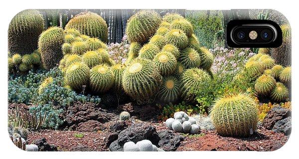 Cactus Phone Case by Jim McCullaugh