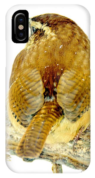 Carolina Wren In Winter IPhone Case