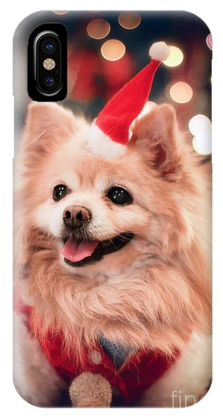 Pomeranian iPhone Case - Christmas Dog by Charline Xia
