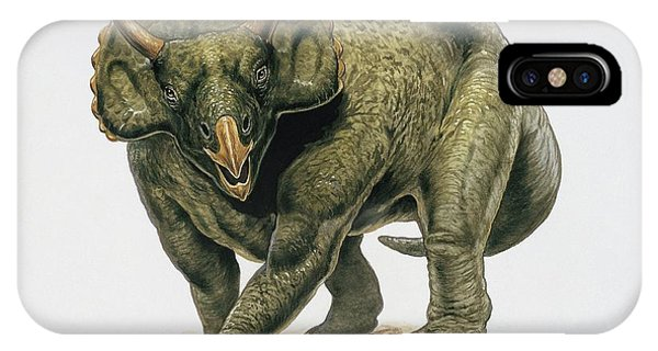 Diceratops iPhone Case - Close-up Of A Dinosaur by Deagostini/uig/science Photo Library