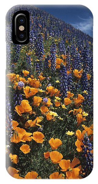 Colossal California Wildflowers IPhone Case