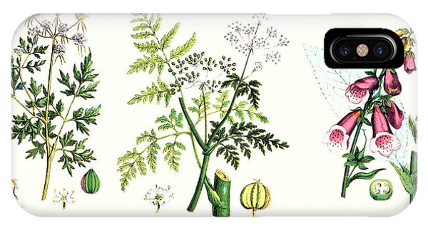 Botany iPhone Case - Common Poisonous Plants by English School