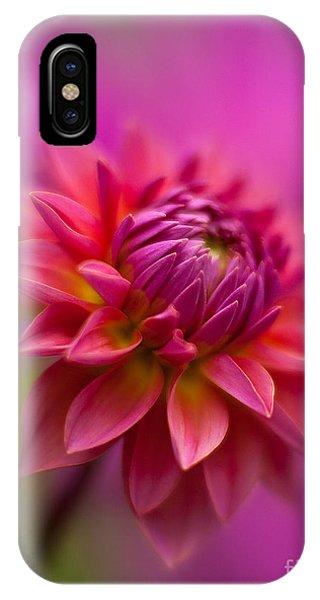 Soft Focus iPhone Case - Dahlia Burst by Mike Reid