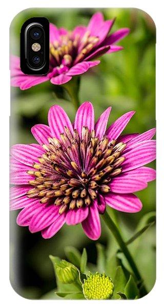 Desert Flower Phone Case by Pete Mecozzi