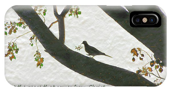 Dove Silhouette On Tree IPhone Case