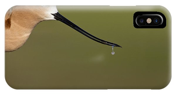 Drippy IPhone Case