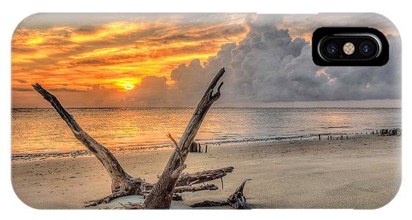 Folly Beach Driftwood IPhone Case