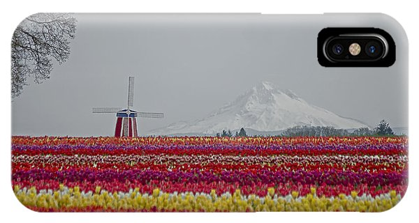 For The Beauty Of The Earth IPhone Case