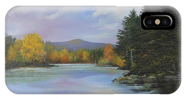 Gale Meadow Pond IPhone Case