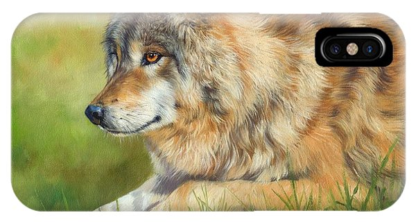 Wolf iPhone Case - Grey Wolf by David Stribbling