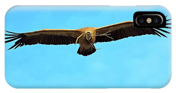 Griffon iPhone Case - Griffon Vulture In Flight by Bildagentur-online/mcphoto-schaef