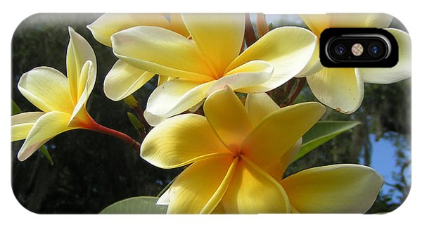 Hawaiian Flowers IPhone Case