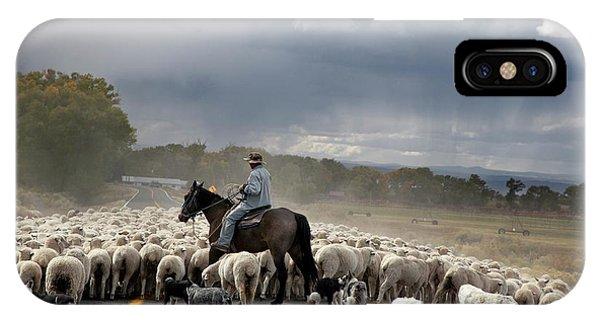 Herding Sheep Phone Case by Jim West