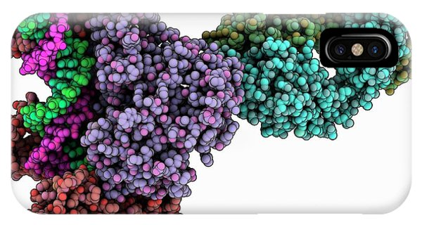 Hiv-1 Reverse Transcriptase Complex Phone Case by Laguna Design/science Photo Library