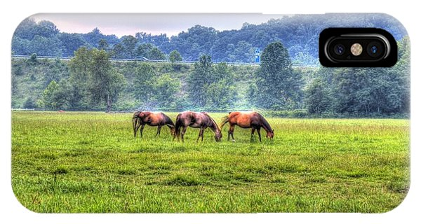 Horses In A Field IPhone Case