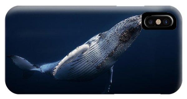 Dive iPhone Case - Humpback Whale by Barathieu Gabriel