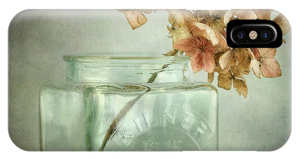Fall Flowers iPhone Case - Hydrangea by Mandy Disher
