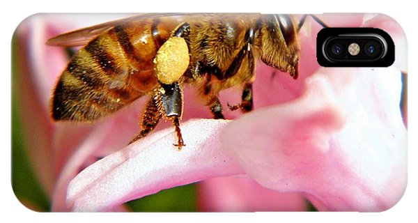 Honeybee iPhone X Case - In The Pink by Chris Berry