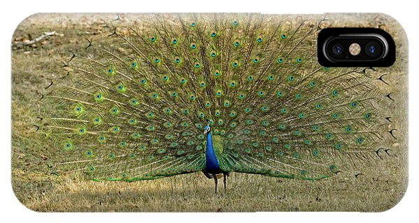 Indian Peacock Phone Case by Tony Camacho/science Photo Library