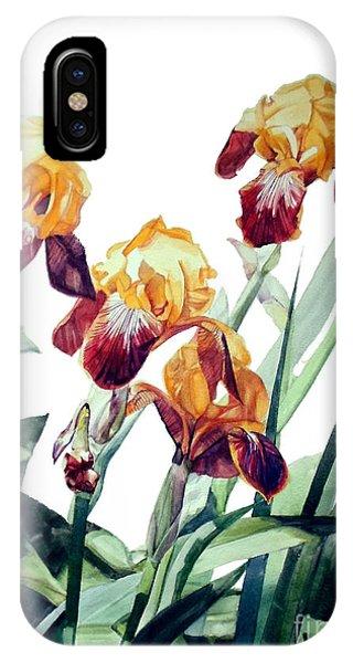 Watercolor Of Tall Bearded Irises I Call Iris La Vergine Degli Angeli Verdi IPhone Case