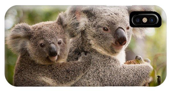 Koala And Joey IPhone Case