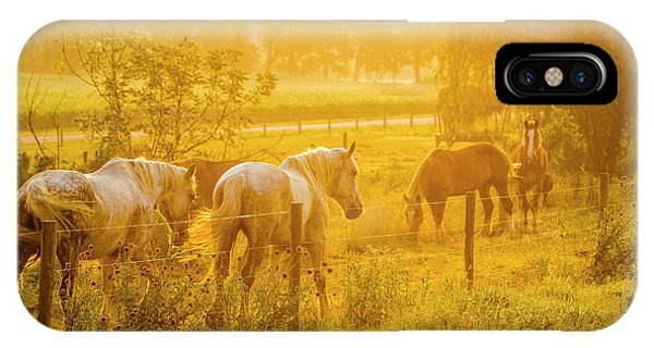 Amish iPhone Case - Lancaster County, Pennsylvania by Jolly Sienda