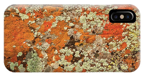 IPhone Case featuring the photograph Lichen Abstract by Mae Wertz