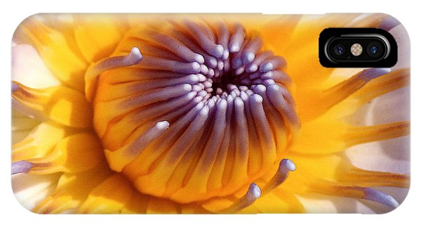 Lotus Lily IPhone Case