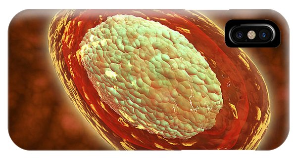 Microscopic View Of Samllpox IPhone Case