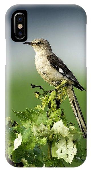 Mocking Bird IPhone Case