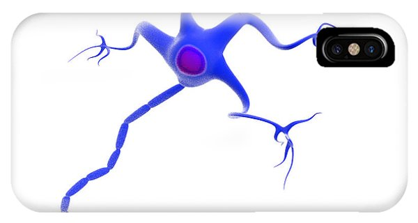 Neurology iPhone Case - Nerve Cell by Gunilla Elam/science Photo Library