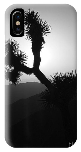 New Photographic Art Print For Sale Joshua Tree At Sunset Black And White IPhone Case