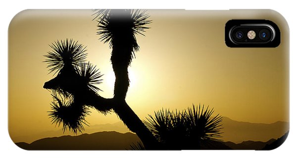 New Photographic Art Print For Sale Joshua Tree At Sunset IPhone Case