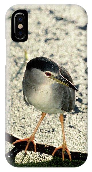 Night Heron Phone Case by Tony Camacho/science Photo Library