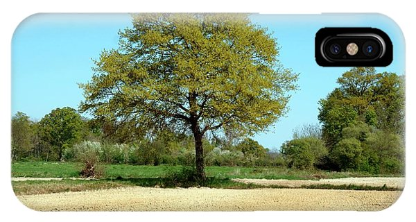 Deciduous iPhone Case - Oak (quercus Robur) by Brian Gadsby/science Photo Library