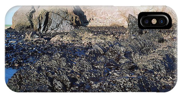 Haven iPhone Case - Oil Pollution by Robert Brook/science Photo Library